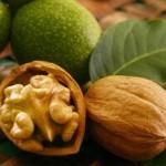 Орехи — лучший продукт для мозга студентов-мужчин