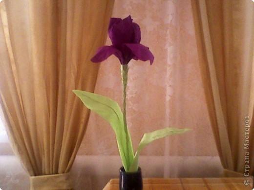 Как сделать цветок ирис из бумаги своими руками