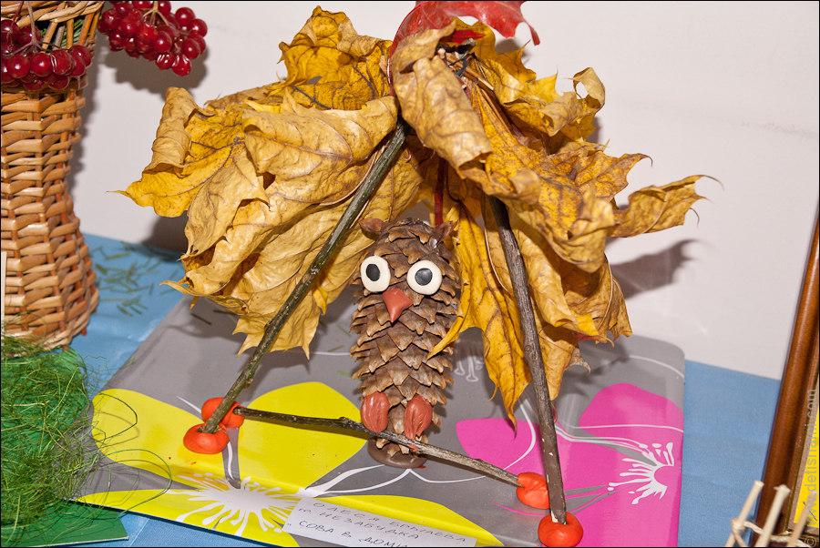 Шишки и листья поделки