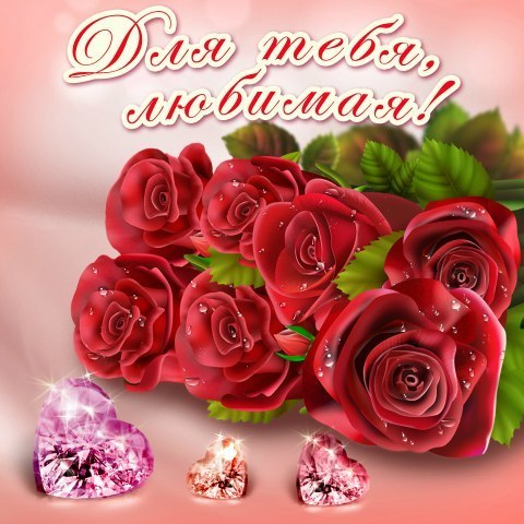 цветы для моей любимой картинки